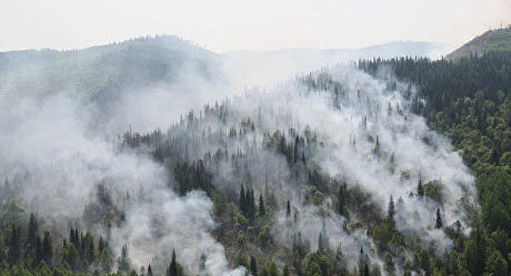 Les incendies font rage en Extrême-Orient