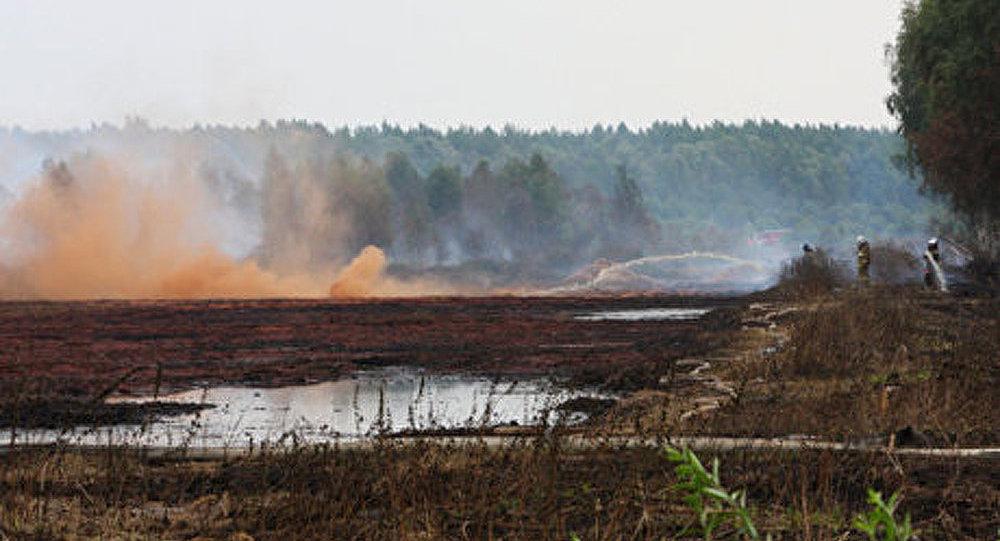 L'Allemagne et les Pays-Bas aideront à recréer des marais tourbeux en Russie