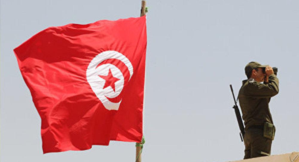 Le printemps arabe long d'une année