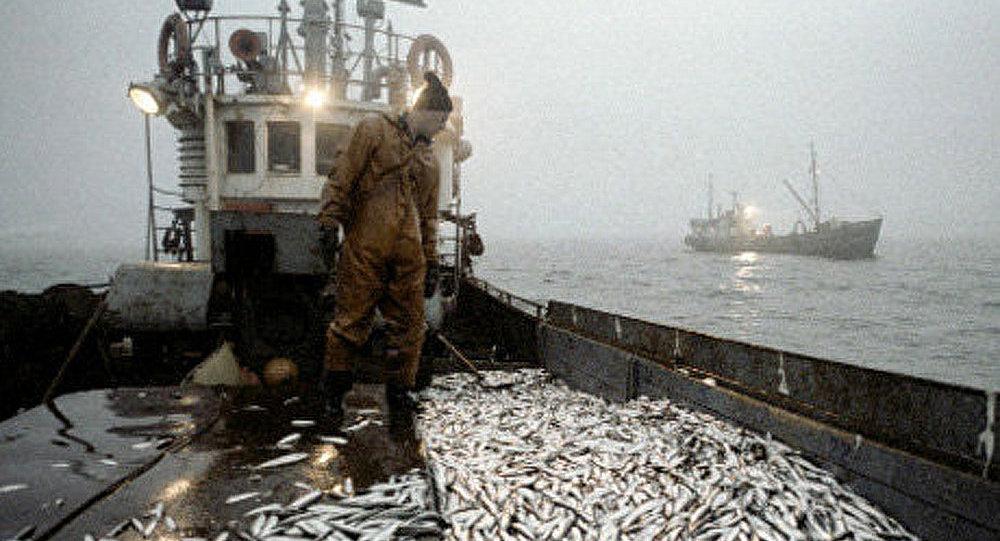 «Guerre de poisson» entre le Maroc et l'Union européenne