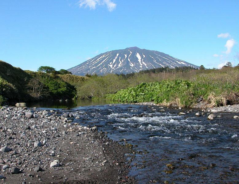 Une réserve naturelle nationale nommée Kourilski a été organisée en 1984 dans l'île de Kunashir et les îles voisines, en Extrême-Orient.