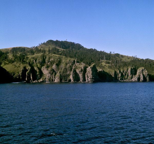 La majorité de la surface de la réserve est couverte de forêts tempérées mixtes et de conifères.