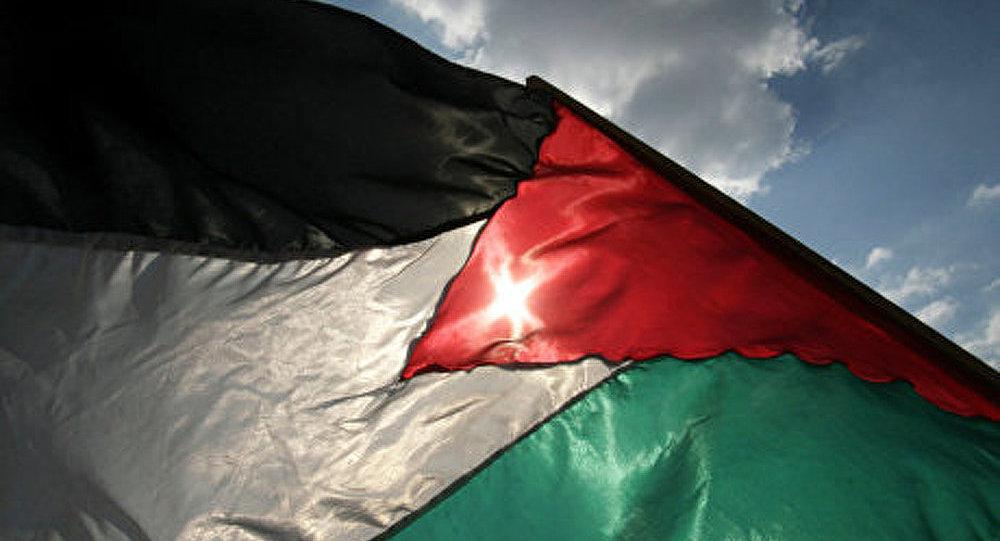 Palestine Solidarité, l'engagement courageux d'un Français