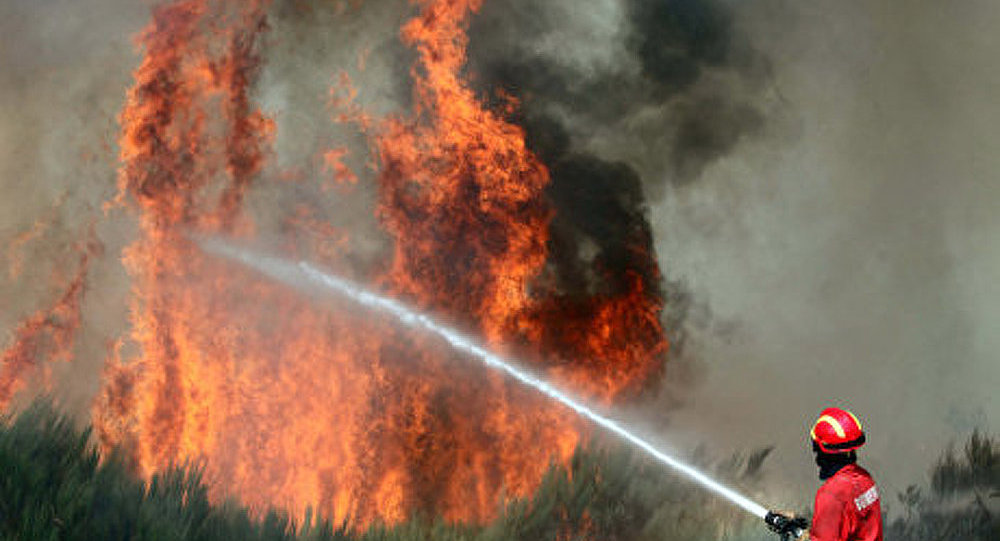 Le Portugal demande l'aide européenne pour combattre les incendies