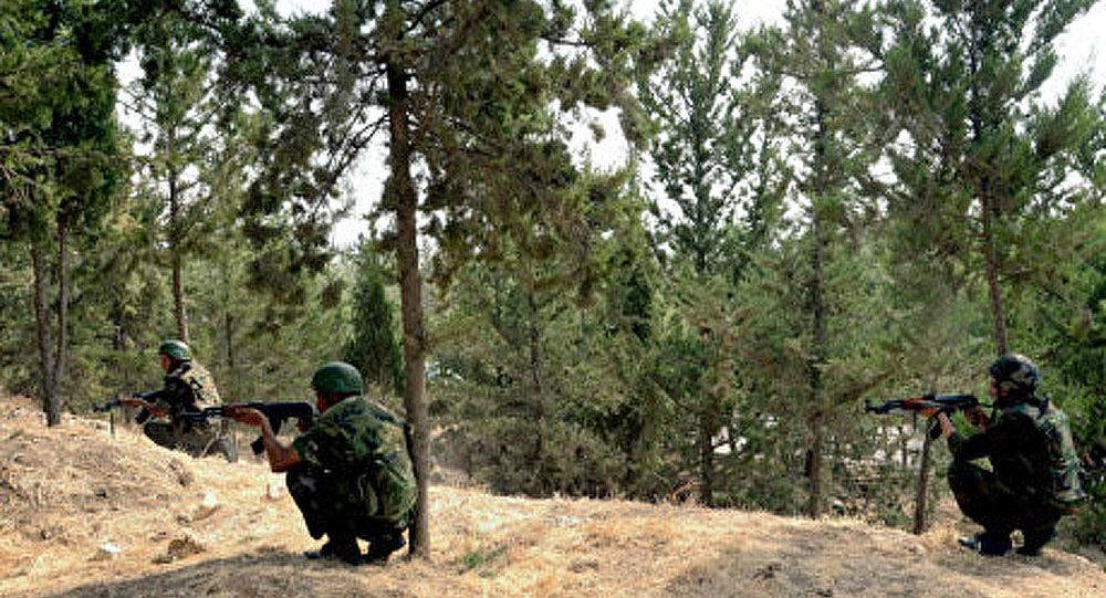 Damas pourrait décréter un cessez-le-feu pour la fête d'al-Adha