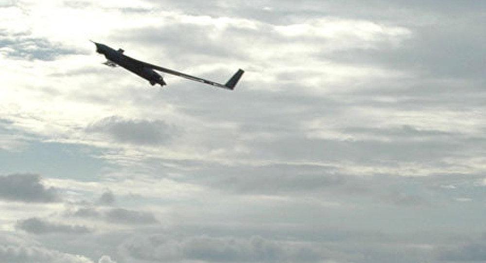 Le Hezbollah utilise des drones allemands