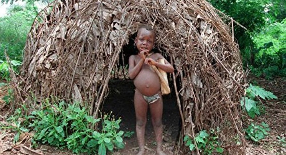 Les Pygmées chasseurs de miel : la fonction crée l'organe