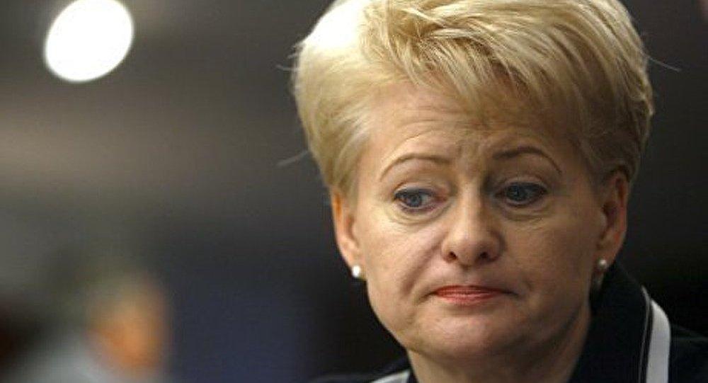 La crise économique a des responsables concrets (présidente lituanienne)