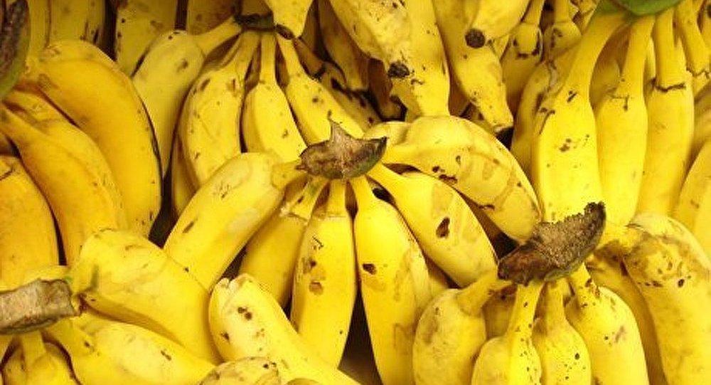 Belgique : 66 kg de cocaïne découverts parmi des bananes