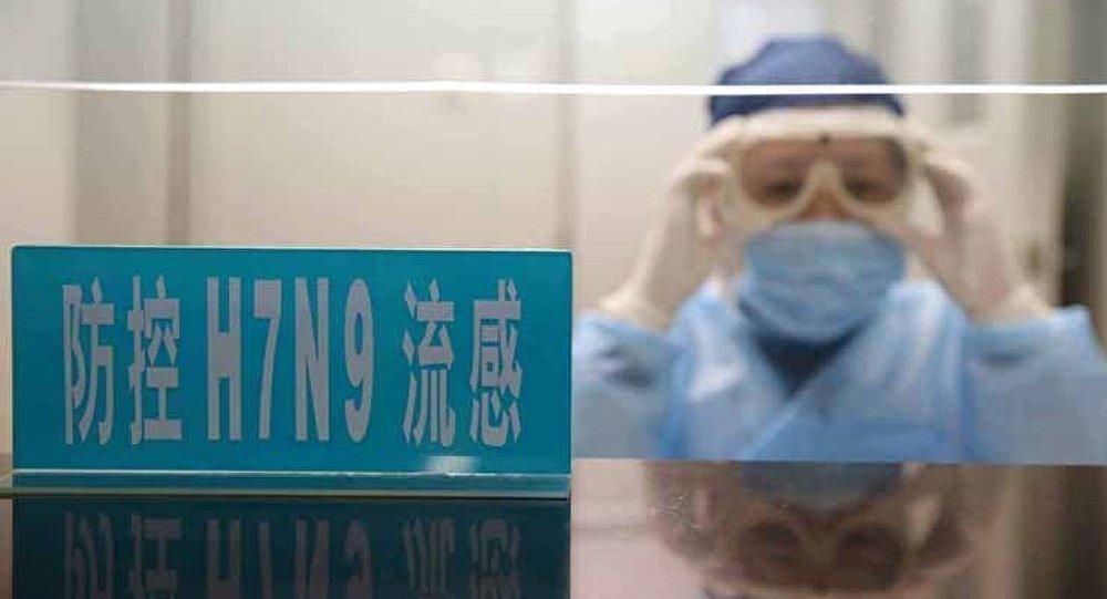 Les médecins chinois ont créé un vaccin contre la grippe aviaire
