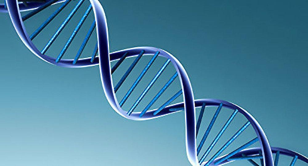 L'ADN extracellulaire favorise le cancer