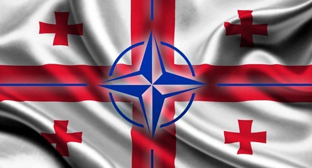 Crise ukrainienne : un prétexte pour intégrer la Géorgie dans l'OTAN
