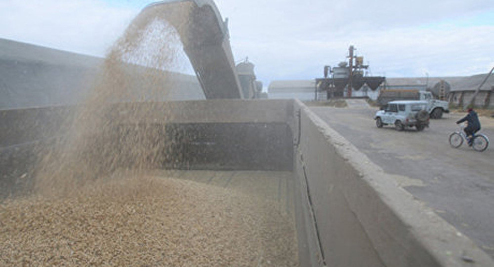Hausse du cours des céréales sur fond d'événements en Ukraine