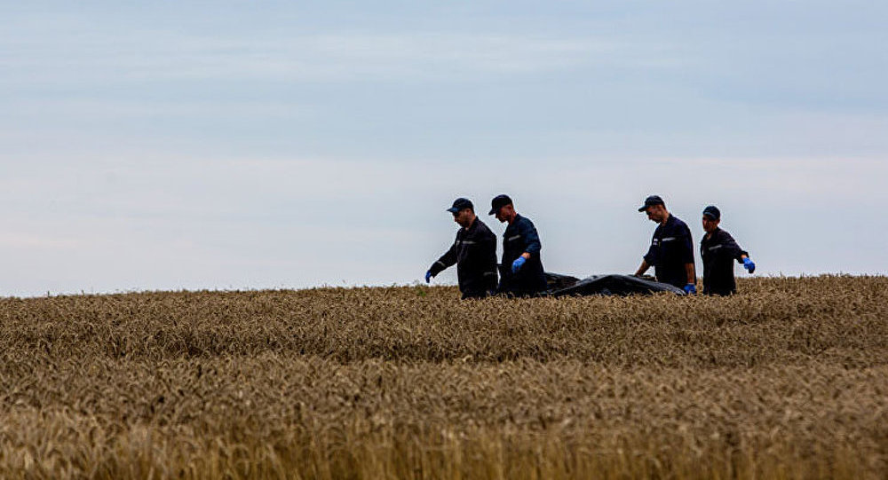 L'identification des victimes du crash du Boeing débutera le 21 juillet