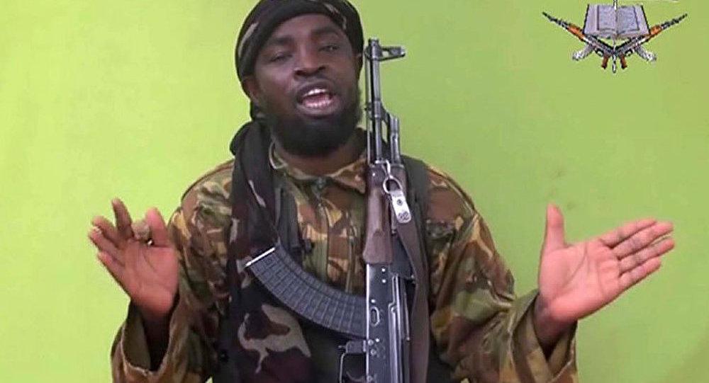 Boko Haram menace le Cameroun. A qui le tour ?