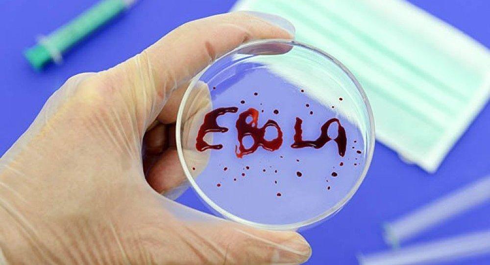 17 patients contaminés par le virus Ebola échappés de l'hôpital