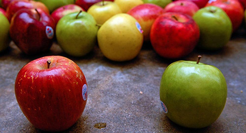 L'UE décide de distribuer gratuitement les légumes et fruits frappés par l'embargo russe