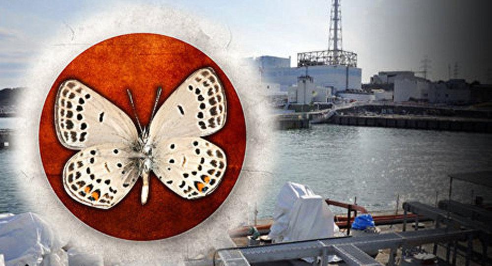 Les premiers mutants découverts dans la zone de Fukushima