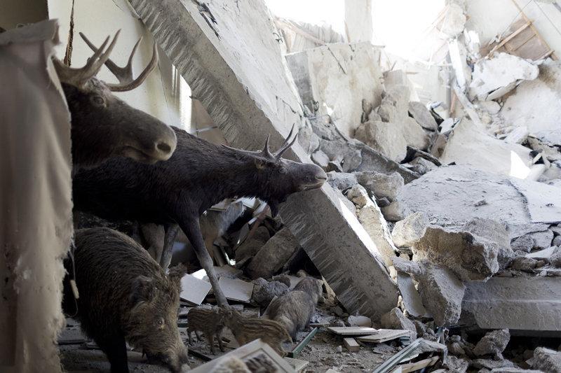 Le Musée régional détruit à Donetsk