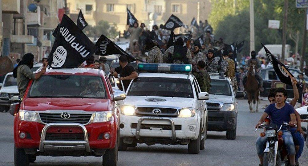 L'opposition syrienne pourra-t-elle venir à bout de l'EI ?