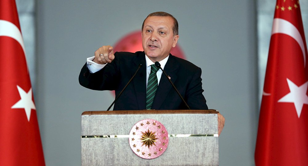 Turkish President Tayyip Erdogan makes a speech during a meeting in Ankara, Turkey February 17, 2016,
