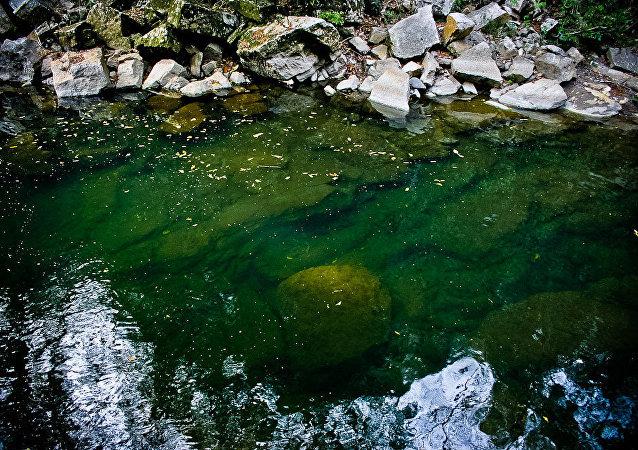 La rivière d'Atoyac