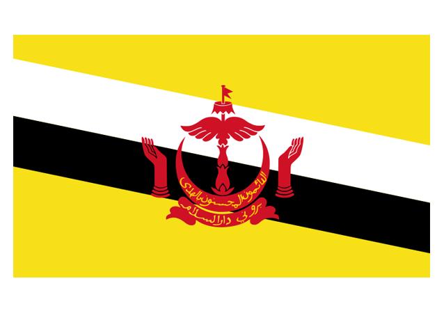 Brunei : un nouveau code pénal basé sur la charia entre en vigueur