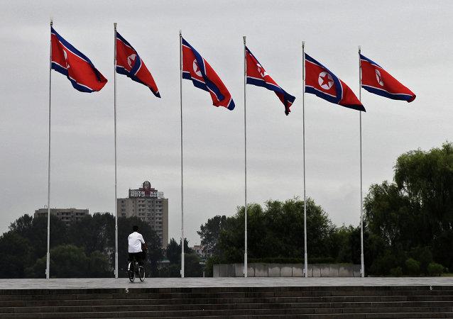 Drapeaux nord-coréens
