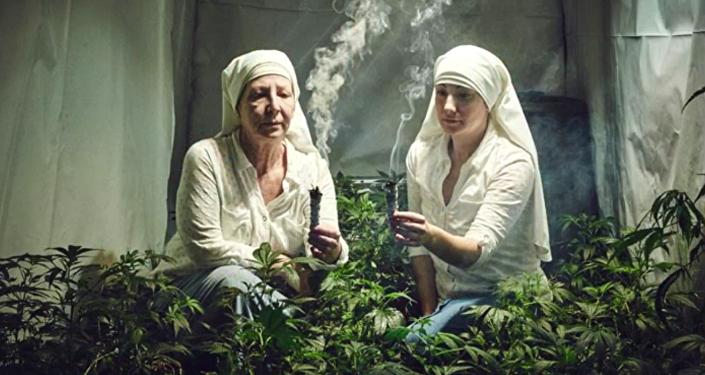Ces religieuses qui cultivent et vendent du cannabis