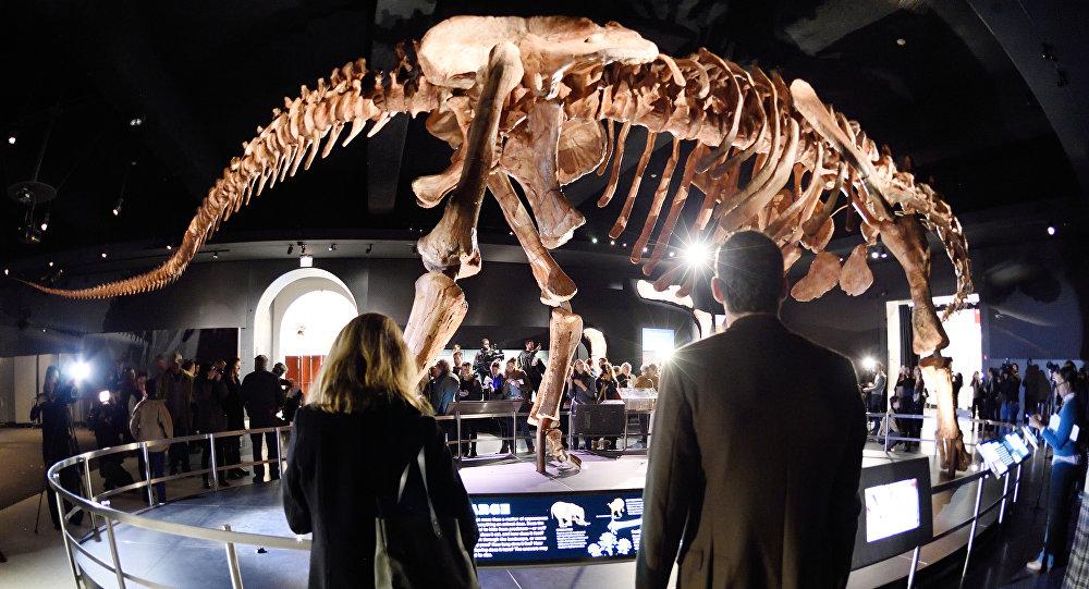 Le Titanosaur