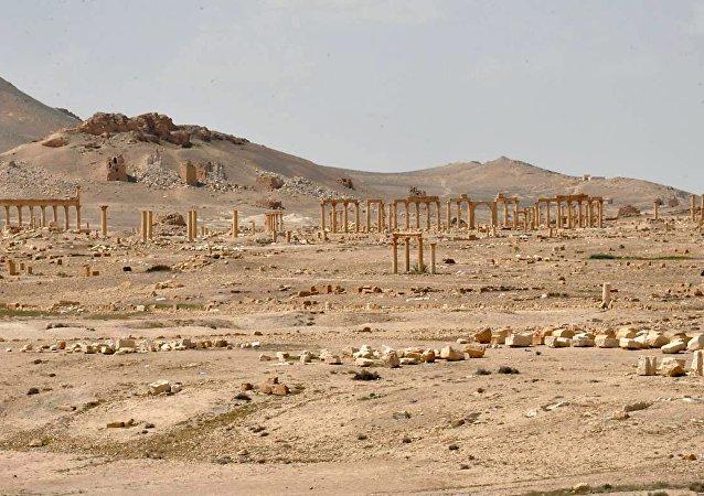 Vue générale du site historique de Palmyre