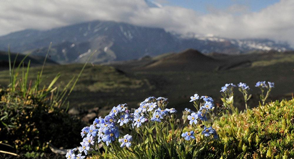 Kamtchatka