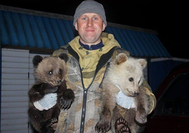 Un Russe qui sauve des ours