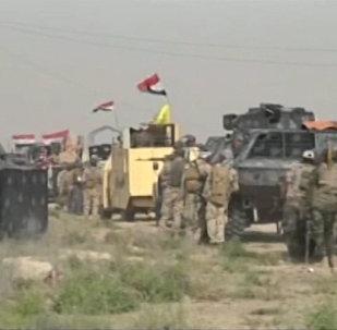 Les forces irakiennes entrent dans Falloujah
