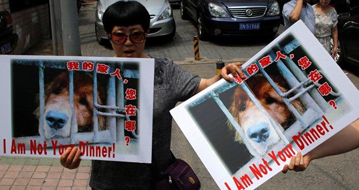 Le festival annuel de la viande de chien organisé dans la ville chinoise de Yulin s'est retrouvé cette année sous le feu des critiques.