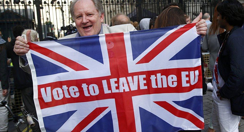 Partisan du Brexit