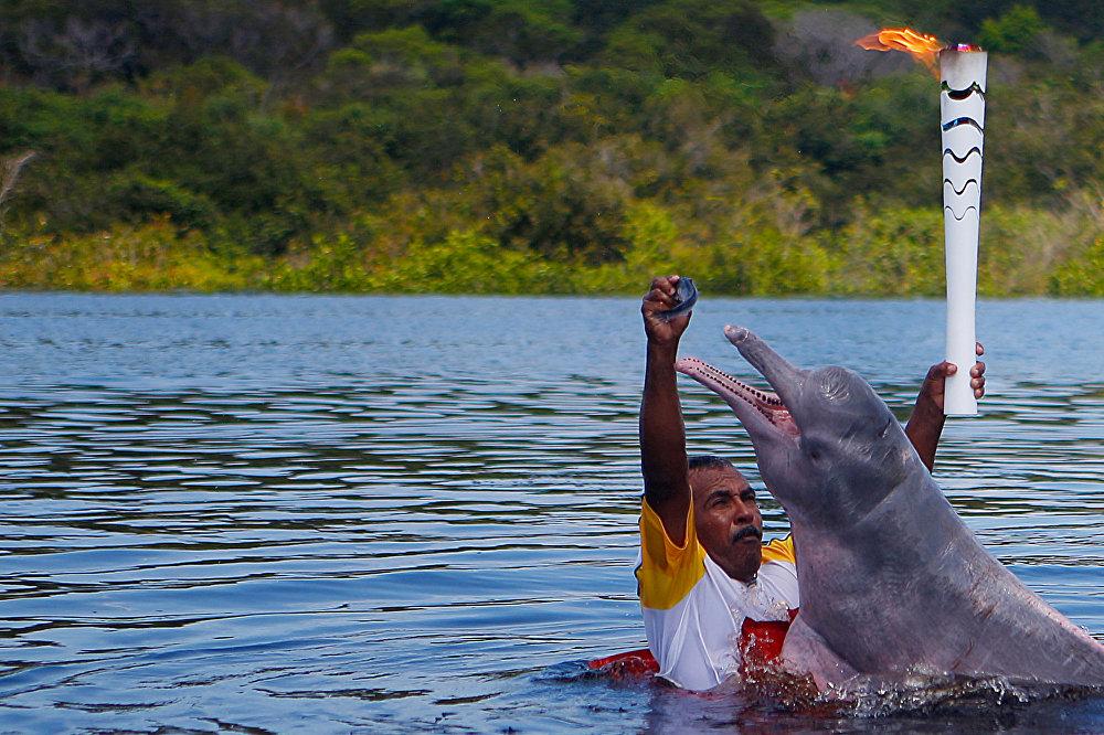 La course à relais de la flamme olympique dans la municipalité brésilienne d'Iranduba s'est tenue avec la participation d'un dauphin