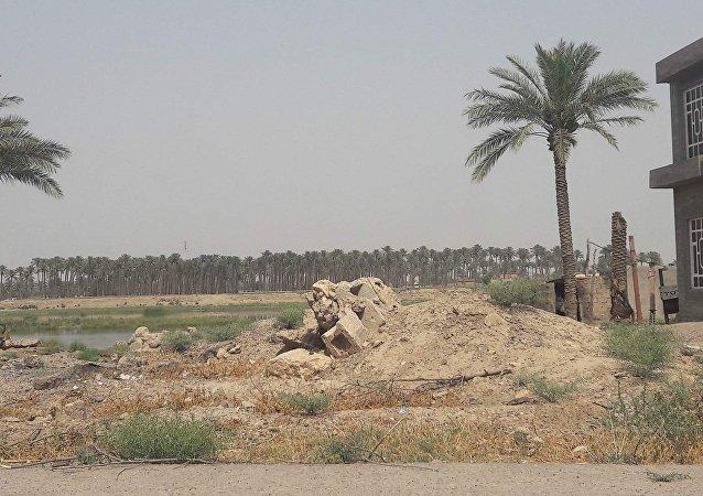 Falloujah (Irak)