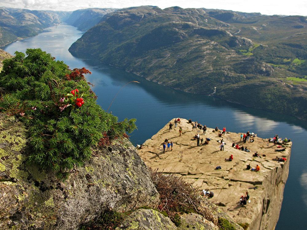Preikestolen est une imposante falaise qui culmine à 604 mètres au-dessus des eaux du Lysefjord en Norvège.