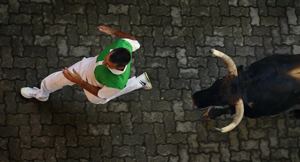 Taureau. Image d'illustration