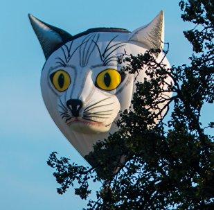 Ballon gonflable. Image d'illustration