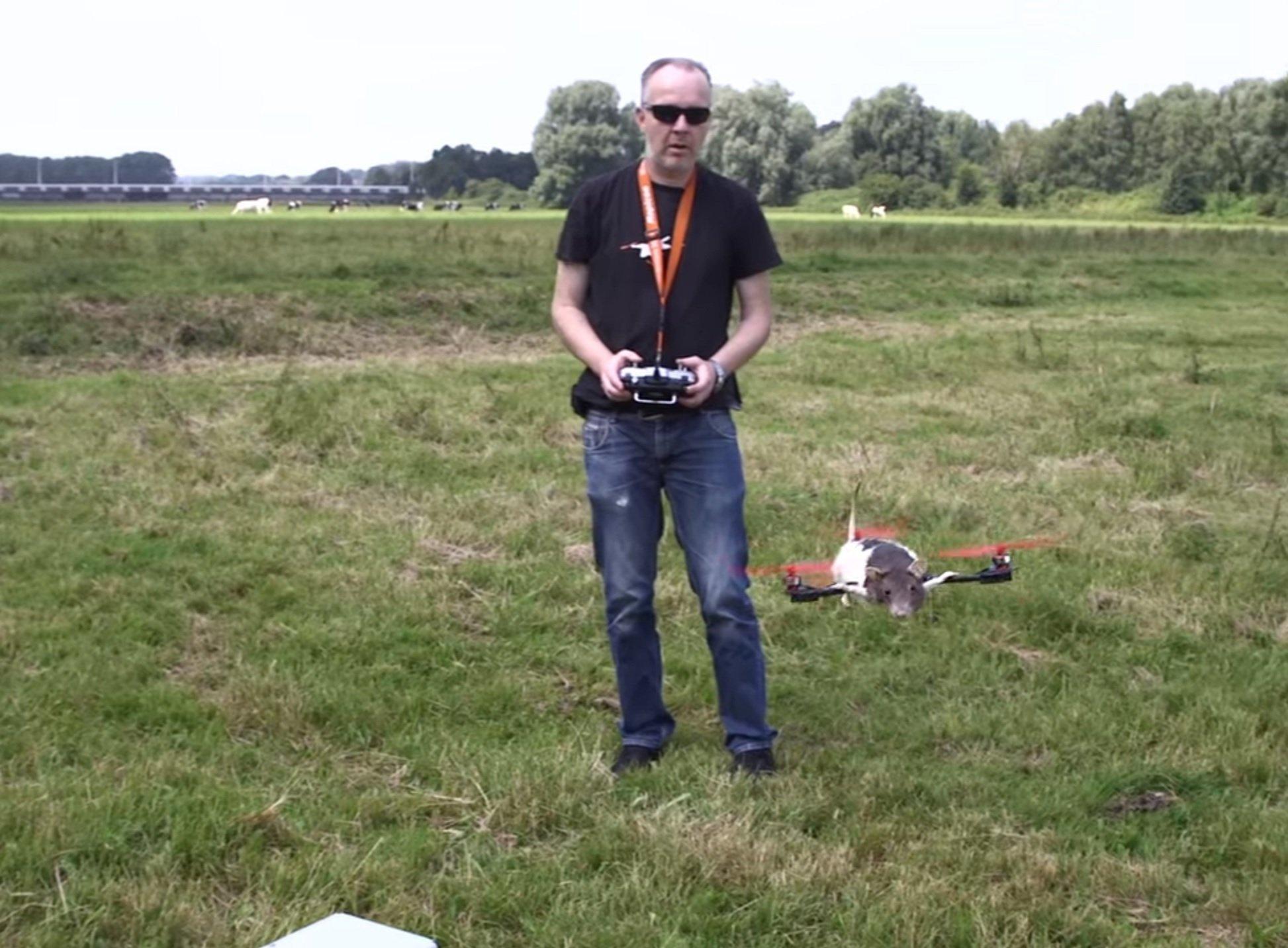Un drone fait à partir d'un rat mort