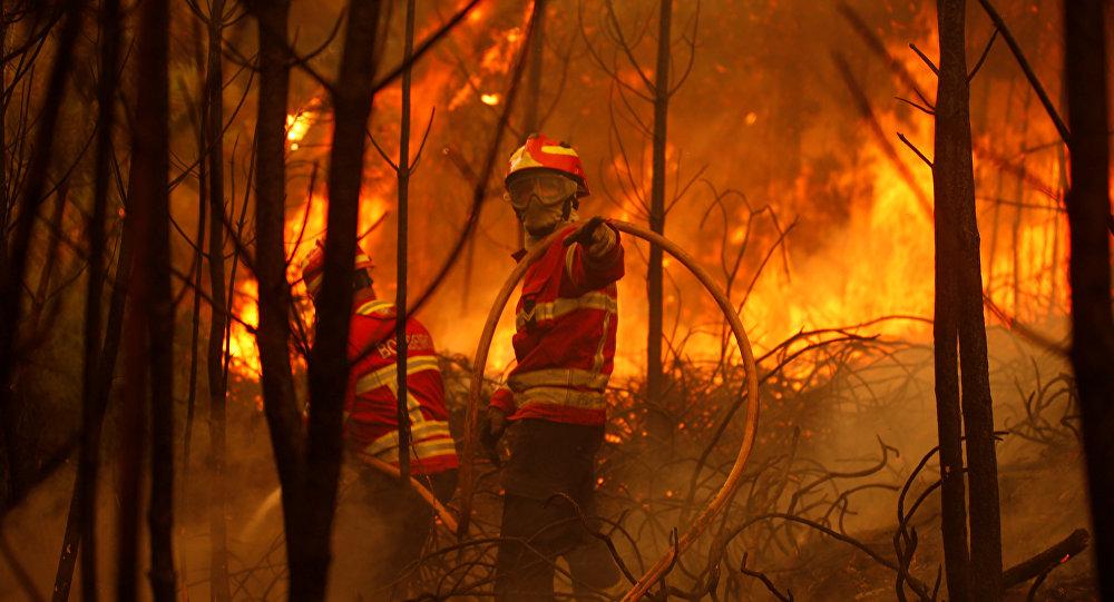 Portugal: crash d'un avion des pompiers lors d'une opération de lutte contre les incendies