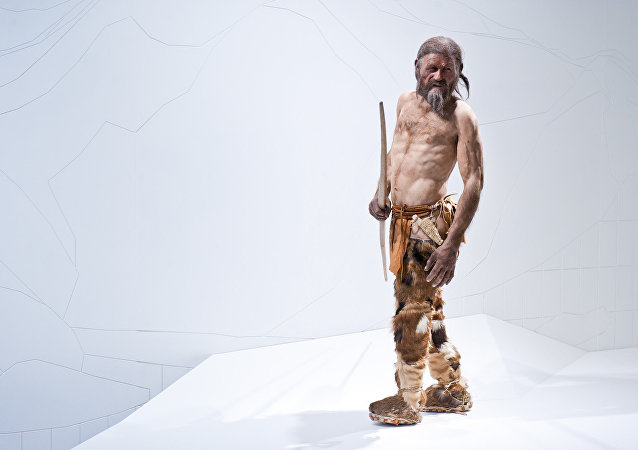 Ötzi, l'homme des glaces âgé de 5.300 ans