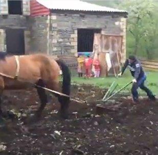 Le Char russe qui labourait la terre pour gagner!
