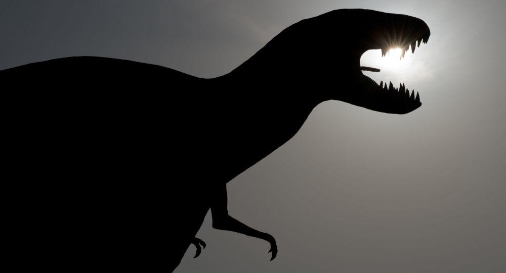 Après les dinosaures, une nouvelle grande vague d'extinctions est prévue pour bientôt