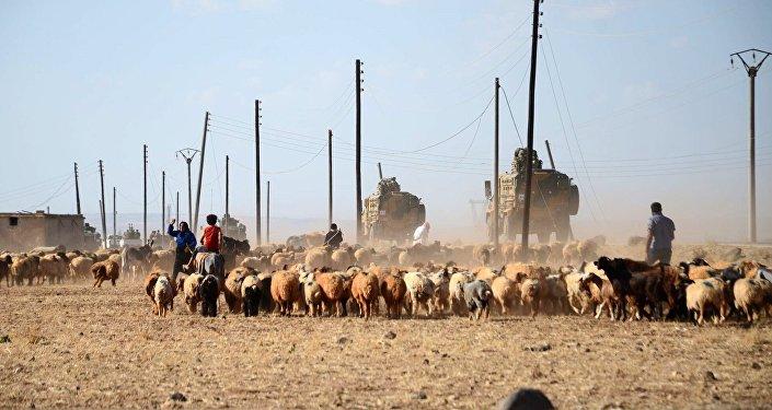 La libération de Raqqa en proie aux contradictions américano-turques