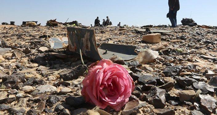 Crash de l'Airbus A321: le lieu de l'emplacement de la bombe dévoilé