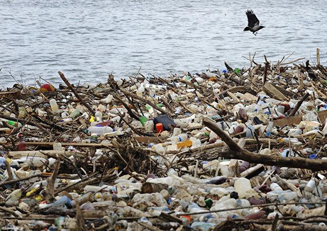 A l'horizon 2050, le plastique supplantera le poisson dans l'océan