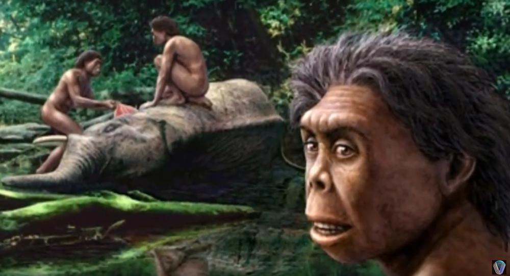 """Résultat de recherche d'images pour """"Homo sapiens,"""""""